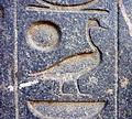 Luxor temple19.JPG
