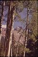 MT. SNEFFELS - NARA - 544909.tif