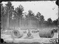 Making gabions, Lines of Investment, Petersburg, Va - NARA - 528968.tif