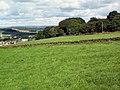 Manywells Brow - geograph.org.uk - 40033.jpg