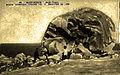 Martinique Bombe volcanique du Mont-Pelé.jpg