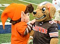 Mascots at 2014 at Browns training camp.jpg