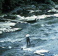 McConnells Mill State Park Fishing.jpg