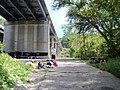 Millwood, VA, USA - panoramio (4).jpg