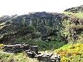 Mines Rd, Isle of Man - panoramio.jpg