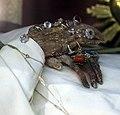 Montepulciano, sant'agnese, interno, corpo di sant'agnese segni, 04.jpg