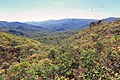 Monteverde Reserve Costa Rica 07.jpg