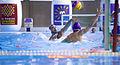 Montpellier-water-polo-waterpolo-david-heinrich.jpg