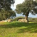 Monumentos Funerários - panoramio.jpg