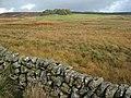 Moorland near Corseglass - geograph.org.uk - 267188.jpg