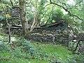 Mouldering remains - geograph.org.uk - 525081.jpg
