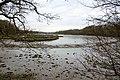 Mud - geograph.org.uk - 1065276.jpg