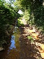 Muddy bridleway - geograph.org.uk - 227902.jpg