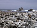 Mupe Rocks - geograph.org.uk - 24364.jpg