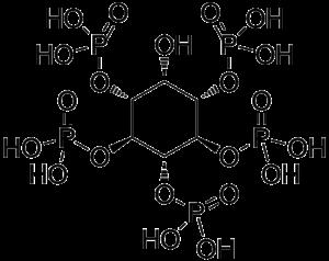 Inositol pentakisphosphate - Image: Myo Inositol 1,3,4,5,6 pentakisphosphate