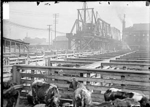 Stock Yards branch (CTA) - Construction of the Stock Yards 'L'