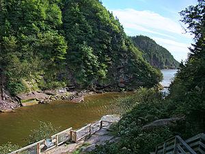 Fundy National Park, New Brunswick, Canada. Po...