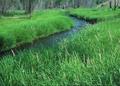 NRCSOR00041 - Oregon (5777)(NRCS Photo Gallery).tif