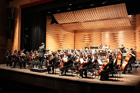 A concert by National University of Singapore Symphony Orchestra NUoSSO in Vienna01.jpg