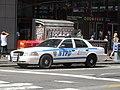 NYPD ESU K-9 Ford CVPI.jpg