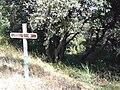 Nages Oppidum Roque de Viou 3988.JPG