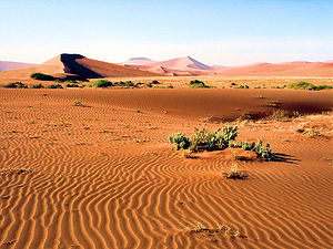 Namib-Naukluft National Park - Ancient dunes near Sossusvlei, in the relatively frequently visited center of the national park, accessible by road from Sesriem.