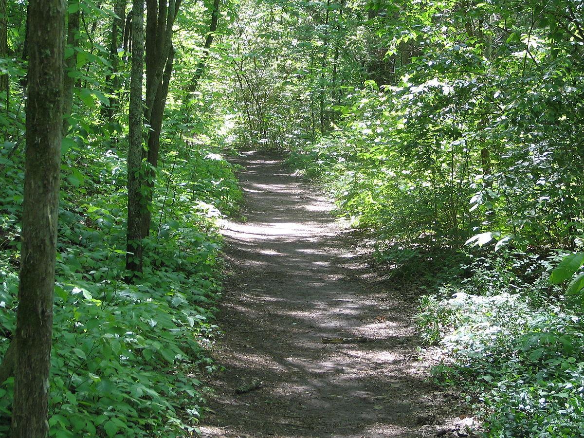 Natchez trace trail wikipedia for Where to go horseback riding near me