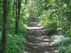 Natchez Trace Trail.jpg