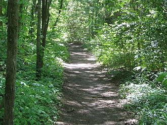 Natchez Trace Trail - Natchez Trace Trail in Warner Park, Nashville, Tennessee.