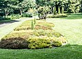 National Botanic Gardens In Glasnevin (Dublin) - panoramio (12).jpg