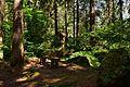 Naturpark Ötztal - Landschaftsschutzgebiet Achstürze-Piburger See - 33.jpg