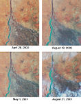 Nile River fluctuating agriculture.jpg