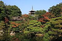 Ninnaji -garden.jpg