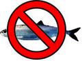 Nofish.PNG