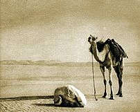 A nomad prayer on a desert in Africa. The phot...