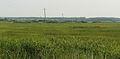 Notec, rejon Bialosliwia (3).JPG