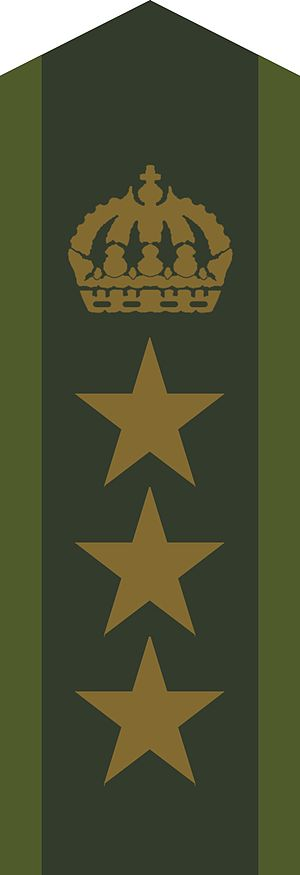 Military ranks of the Swedish Armed Forces - Image: OF 5 Överste