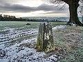Ockley Hill Trig Pillar - geograph.org.uk - 1081859.jpg