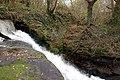 Old Weir on River Darwen - geograph.org.uk - 653311.jpg