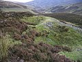 Old mine pits - geograph.org.uk - 590365.jpg