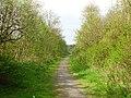 Old railway, Foulshiels - geograph.org.uk - 168200.jpg
