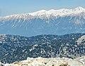 Olimpos Teleferik - panoramio (10).jpg