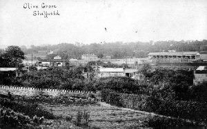 Olive Grove - Olive Grove Stadium, Sheffield