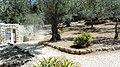 Oliveto al Monte - panoramio.jpg