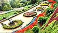 Ooty Government Botanical garden.jpg