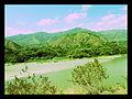 Orillas río Cauca 2.jpg