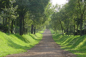 "Picture of a path in the ""Olmate"" in..."
