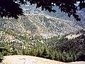 Ormancık köyü - panoramio.jpg