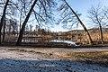 Pörtschach Halbinselpromenade Uferzone mit Schilfrohr 16032018 2702.jpg