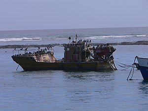 Port Nolloth - An abandoned trawler, damaged on the reef across the mouth of the Port channel